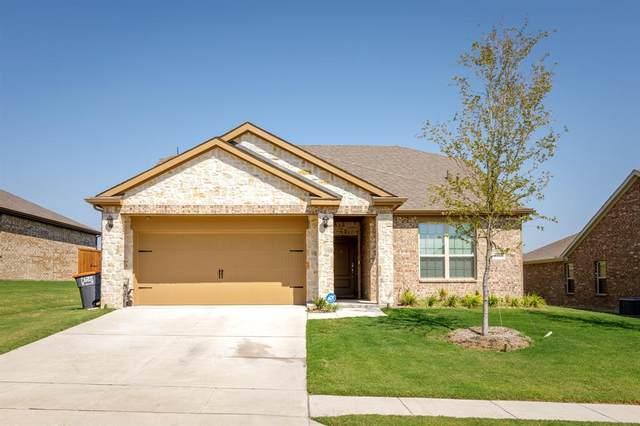1100 Holly Street, Anna, TX 75409 (MLS #14673852) :: The Mauelshagen Group