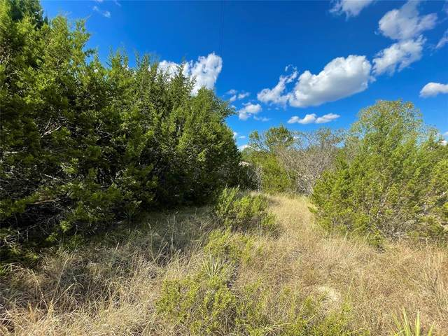 1985 Lighthouse, Bluff Dale, TX 76433 (MLS #14674044) :: VIVO Realty