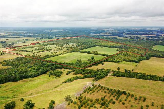 TBD County Rd 4203, Commerce, TX 75428 (MLS #14674156) :: 1st Choice Realty
