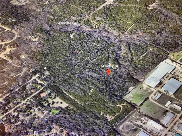 14 Dottie Drive, Cedar Hill, TX 75104 (MLS #14674265) :: The Hornburg Real Estate Group