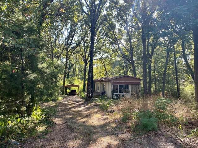 232 Lynn Creek Drive, Mabank, TX 75156 (MLS #14674413) :: VIVO Realty
