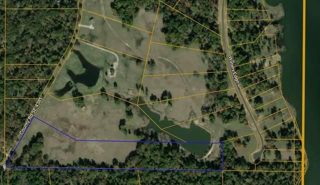 T B D County Rd 4385, Scroggins, TX 75480 (MLS #14674509) :: Real Estate By Design