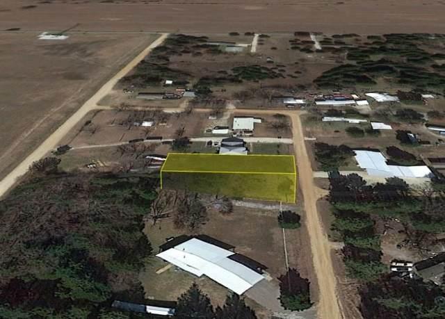 0 Redbird Lane, Sadler, TX 76264 (MLS #14674670) :: Trinity Premier Properties