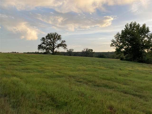 0000 Fm 850, Overton, TX 75684 (MLS #14674870) :: The Russell-Rose Team