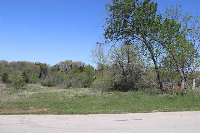 357 Palmilla Drive, Gordonville, TX 76245 (MLS #14675011) :: Trinity Premier Properties