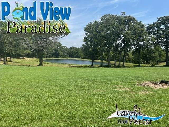 5660 County Road 3901, Athens, TX 75752 (MLS #14675547) :: Potts Realty Group