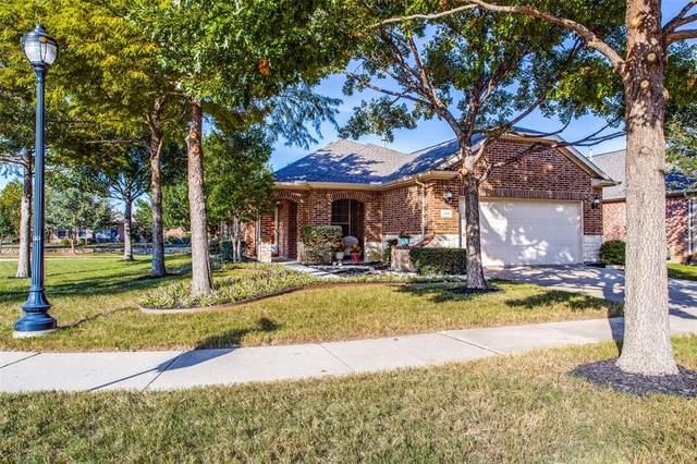 888 Bay Harbor Lane, Frisco, TX 75036 (MLS #14675921) :: Feller Realty