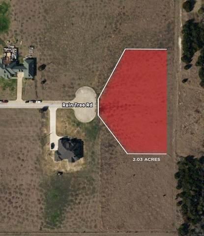 1550 Raintree Drive, Lancaster, TX 75146 (MLS #14676152) :: RE/MAX Landmark