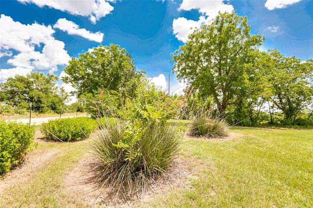 718 County Rd, Ovalo, TX 79541 (MLS #14676828) :: The Rhodes Team