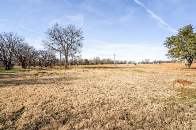 513 Cameran Trail, Copper Canyon, TX 76226 (MLS #14676978) :: Robbins Real Estate Group