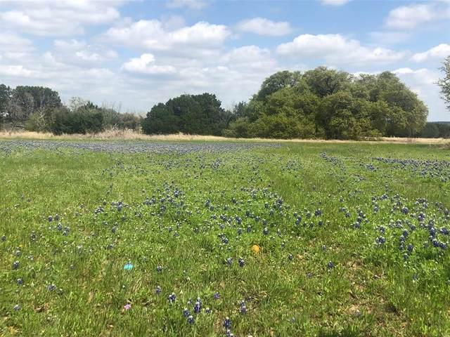4065 Mesquite Drive, Whitney, TX 76692 (MLS #14677198) :: Frankie Arthur Real Estate