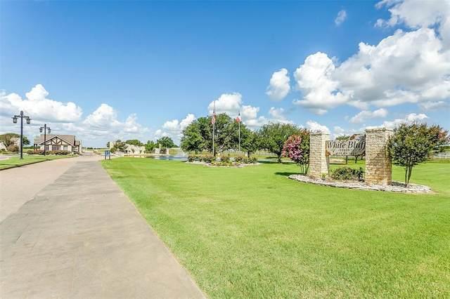 22022 Raintree Court, Whitney, TX 76692 (MLS #14677862) :: The Kimberly Davis Group