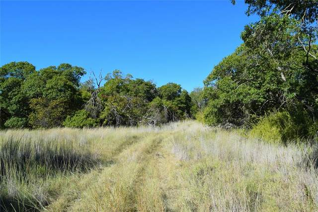TBD Cr 419, Coleman, TX 76834 (MLS #14677998) :: The Russell-Rose Team