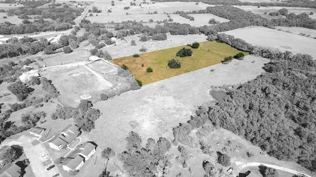 UNK Shelby Street, Bremond, TX 76629 (MLS #14678368) :: All Cities USA Realty
