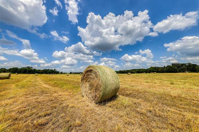 TBD-7 County Road 304, Dublin, TX 76446 (MLS #14678449) :: All Cities USA Realty