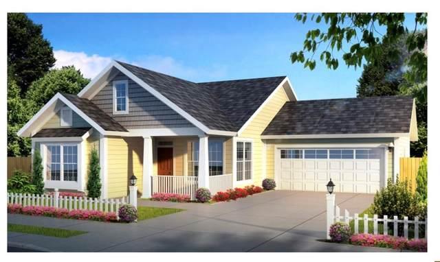 132 Greyhound Lane, Poolville, TX 76487 (MLS #14678454) :: Robbins Real Estate Group