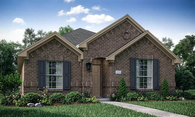 2264 Jasper Drive, Little Elm, TX 75068 (MLS #14679352) :: The Star Team | Rogers Healy and Associates