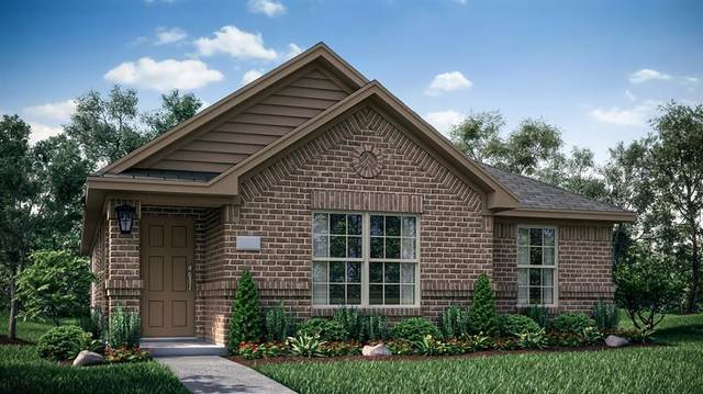 2245 Obsidian Drive, Little Elm, TX 75068 (MLS #14679387) :: The Star Team | Rogers Healy and Associates