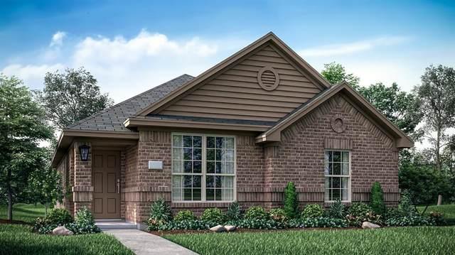 2272 Jasper Drive, Little Elm, TX 75068 (MLS #14679400) :: The Star Team | Rogers Healy and Associates