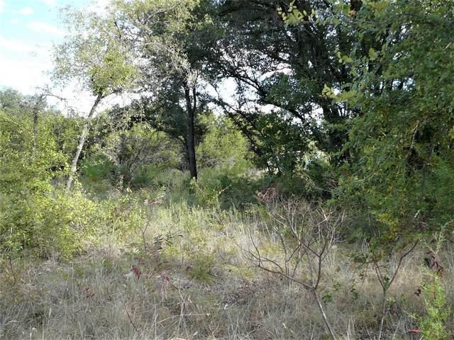 3203 Crystal Court, Granbury, TX 76048 (MLS #14679631) :: Craig Properties Group
