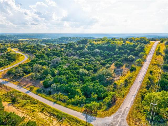 Lt 1208 Jimmy Houston Way, Bluff Dale, TX 76433 (MLS #14679982) :: The Star Team | Rogers Healy and Associates