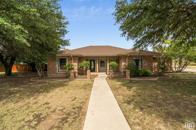 419 Windcrest Drive, Early, TX 76802 (MLS #14680163) :: Russell Realty Group