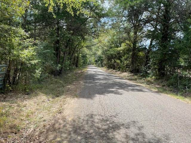 LOT 1 County Road 4609, Ben Wheeler, TX 75754 (MLS #14680260) :: Russell Realty Group