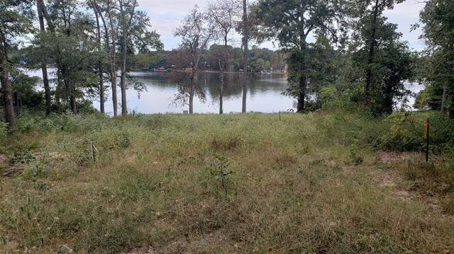 267 Callender Lake Drive, Murchison, TX 75778 (MLS #14680982) :: Jones-Papadopoulos & Co