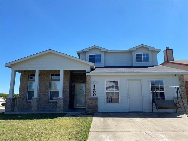 4200 Indigo Drive, Killeen, TX 76542 (MLS #14681623) :: The Star Team | Rogers Healy and Associates
