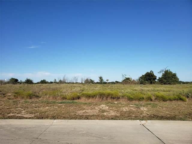 2287 Doe Crossing, Caddo Mills, TX 75135 (MLS #14682158) :: Trinity Premier Properties