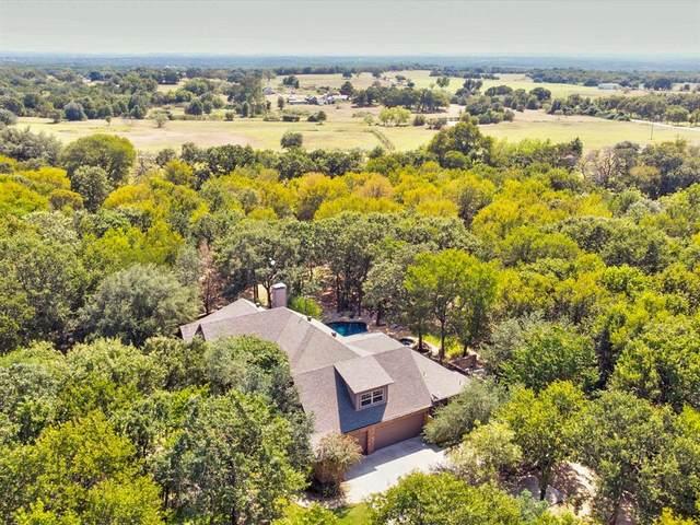 1262 Black Hawk Trail, Nemo, TX 76070 (MLS #14682381) :: Front Real Estate Co.