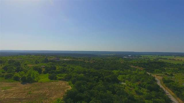 TBD A1 Weatherby Way, Santo, TX 76472 (MLS #14683529) :: Robbins Real Estate Group