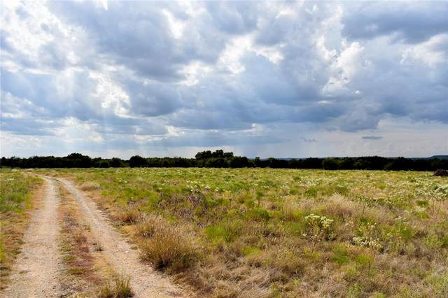 TBD Hwy 180, Palo Pinto, TX 76484 (MLS #14684030) :: Real Estate By Design