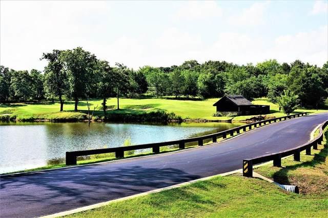 Lot 35C Pronghorn Drive, Gordonville, TX 76245 (MLS #14684309) :: Robbins Real Estate Group