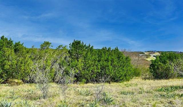 Trk 441 Anglers Ridge, Bluff Dale, TX 76433 (MLS #14684445) :: The Star Team | Rogers Healy and Associates