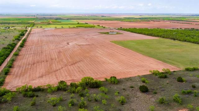 TBD County Road 169, Mccaulley, TX 79534 (MLS #14684619) :: Real Estate By Design