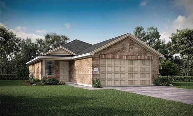 3217 Mountain Lion Avenue, Mckinney, TX 75071 (MLS #14684977) :: HergGroup Dallas-Fort Worth