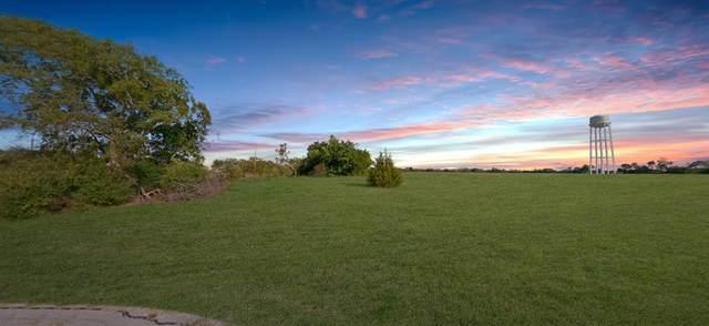 0 Teneha Trail, East Tawakoni, TX 75472 (MLS #14686033) :: Trinity Premier Properties