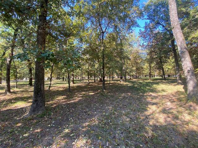 105 Blue Heron Way, Mabank, TX 75156 (MLS #14686474) :: The Star Team | Rogers Healy and Associates