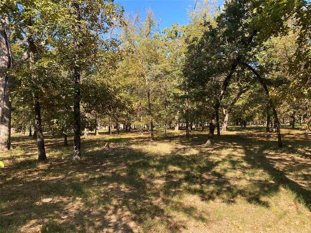 146 Saint Andrews Drive E, Mabank, TX 75156 (MLS #14686481) :: Epic Direct Realty
