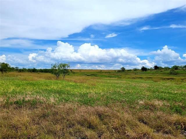 Lot 115 Comanche Lake Road, Comanche, TX 76442 (MLS #14686753) :: Robbins Real Estate Group