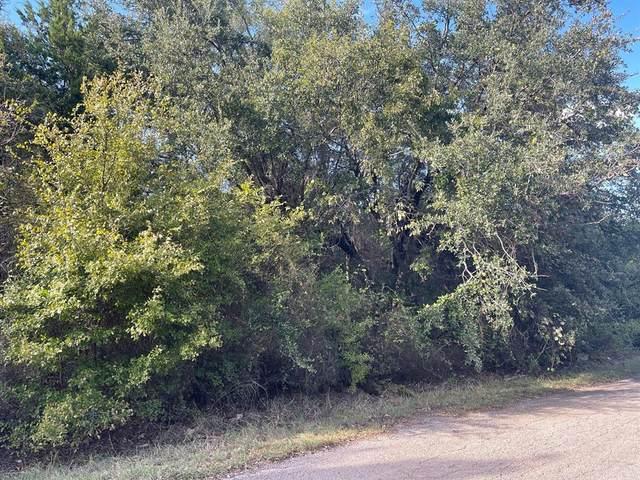 2510 San Gabriel Drive, Granbury, TX 76048 (MLS #14687930) :: The Russell-Rose Team