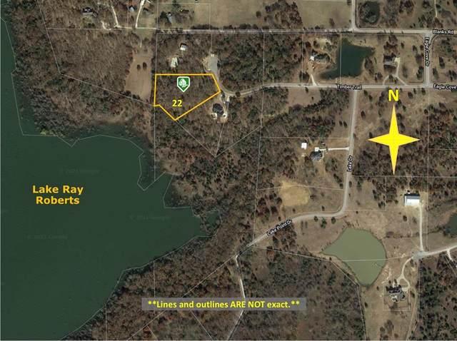 22 Timber Trl, Tioga, TX 76271 (MLS #14688182) :: Robbins Real Estate Group
