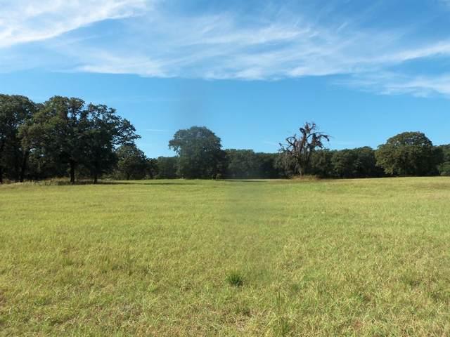 864 Cr 2535, Decatur, TX 76234 (MLS #14688253) :: Trinity Premier Properties