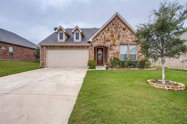 564 Lake Bluff Avenue, Oak Point, TX 75068 (MLS #14688336) :: The Good Home Team