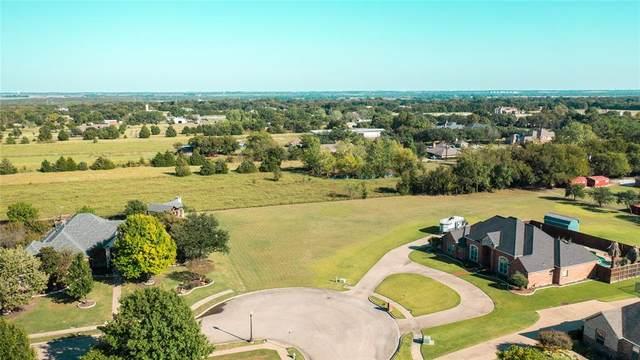 210 Blanco Lane, Sunnyvale, TX 75182 (MLS #14689497) :: Real Estate By Design