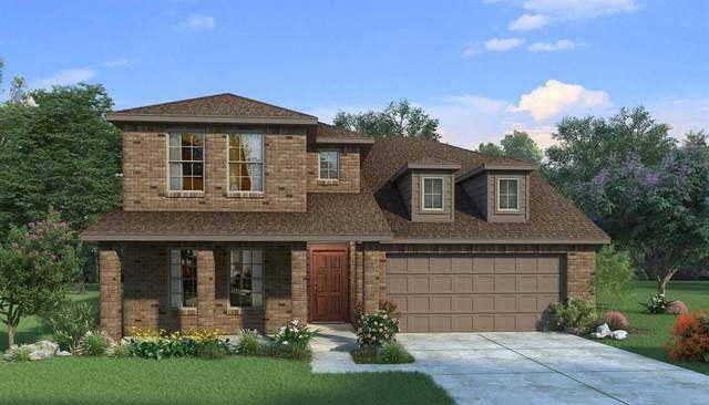 2244 Windy Hill Lane, Waxahachie, TX 75167 (MLS #14690199) :: Lisa Birdsong Group | Compass