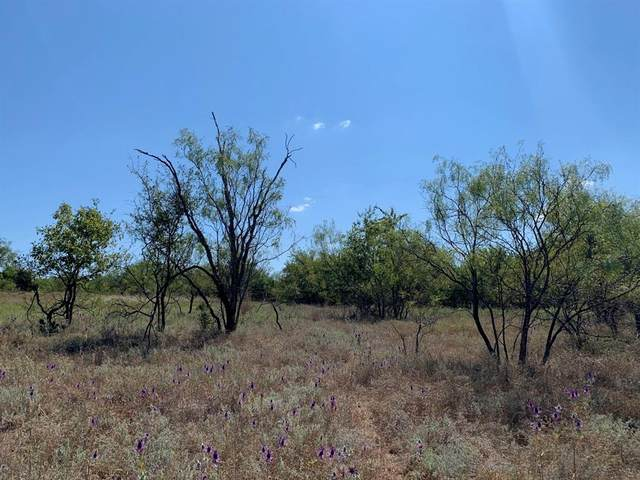 0 Greenwood Road, Comanche, TX 76442 (MLS #14690455) :: Brooks Real Estate
