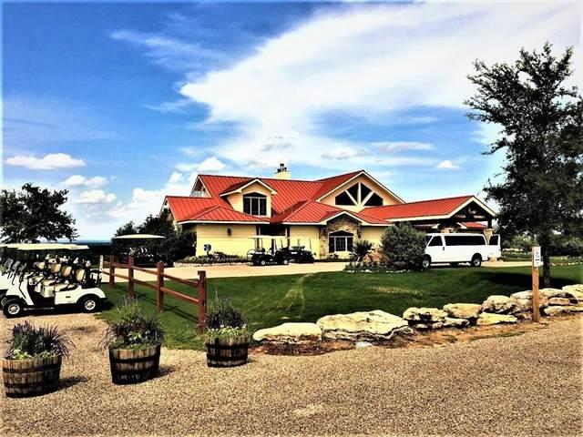 TBD Amy Drive, Brownwood, TX 76801 (MLS #14691514) :: Trinity Premier Properties