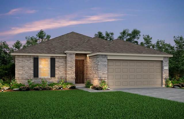 1062 Castroville Drive, Forney, TX 75126 (MLS #14691634) :: The Russell-Rose Team